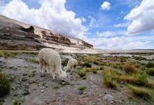 Tillbaka till Peru i minnet